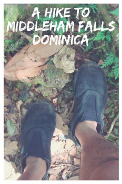 A Hike To Middleham Falls, Dominica #travel #Adventure #Nature
