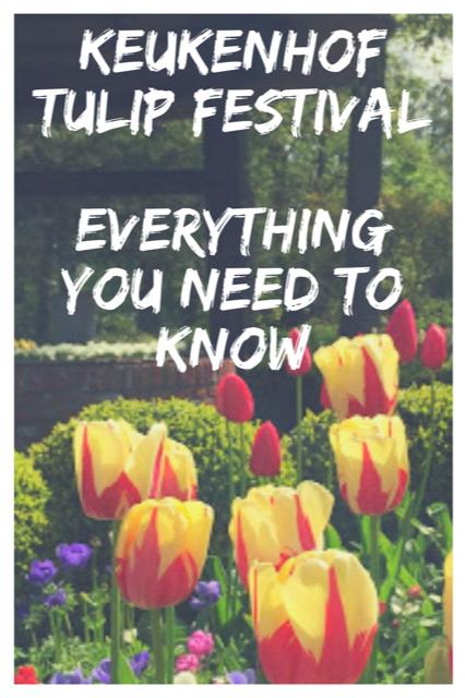 Keukenhof Tulip Festival - Everything You Need To Know #Travel #Tulips #Netherlands
