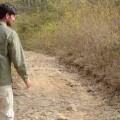 Nature Trails at Corbett National Park