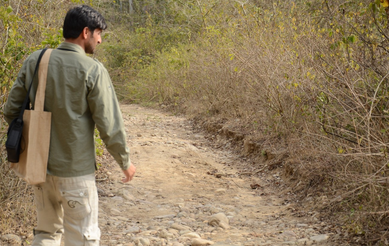 Nature Trails at Corbett National Park
