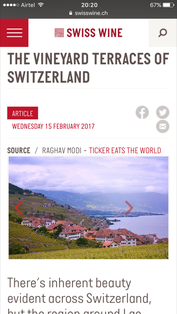 Vineyard Terraces - SwissWine