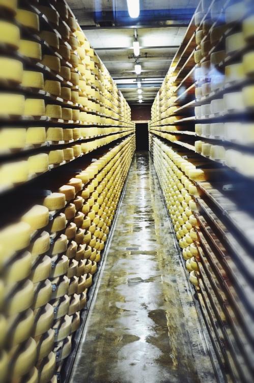 gruyeres-cheese-blocks