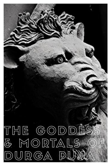 The Goddess and Mortals of Durga Puja - A Photo Essay