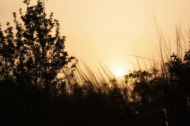 A Corbett Sunset