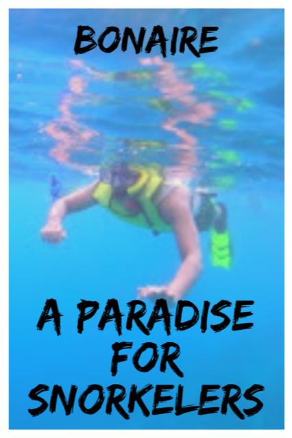 Bonaire - A Paradise for Snorkelers #Bonaire #Caribbean #Snorkel #Island