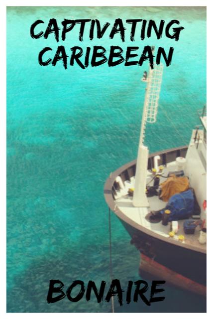 Quaint Bonaire - Captivating Caribbean #Island #Caribbean #Bonaire