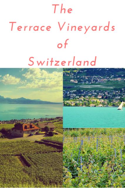 Terraced Vineyards of Switzerland - Wine Travel