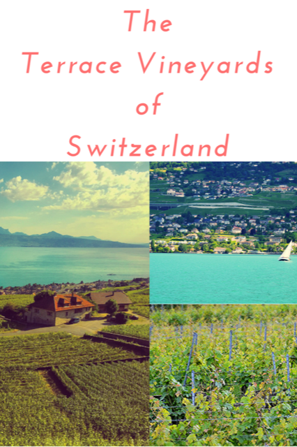 Terraced Vineyards of Switzerland - Wine Travel