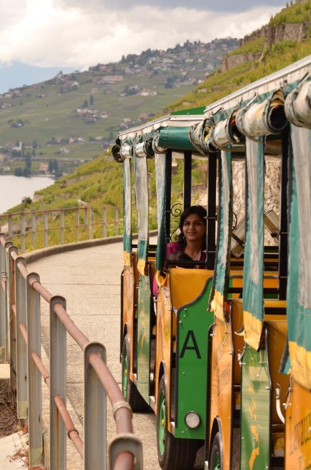 vineyards-toy-train
