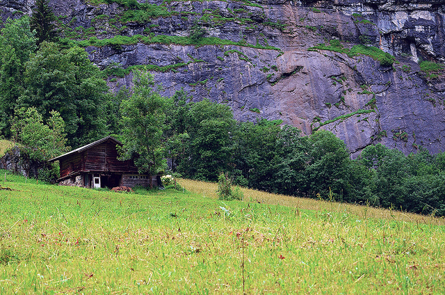 Green all around in Lauterbrunnen