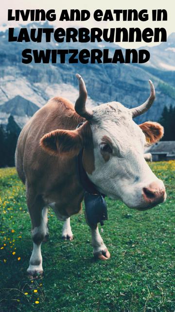 Living and Eating in Lauterbrunnen, Switzerland #Travel #Switzerland #Food