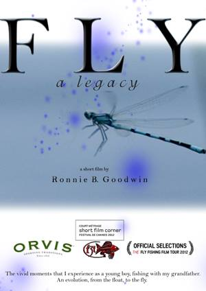 Fly a Legacy