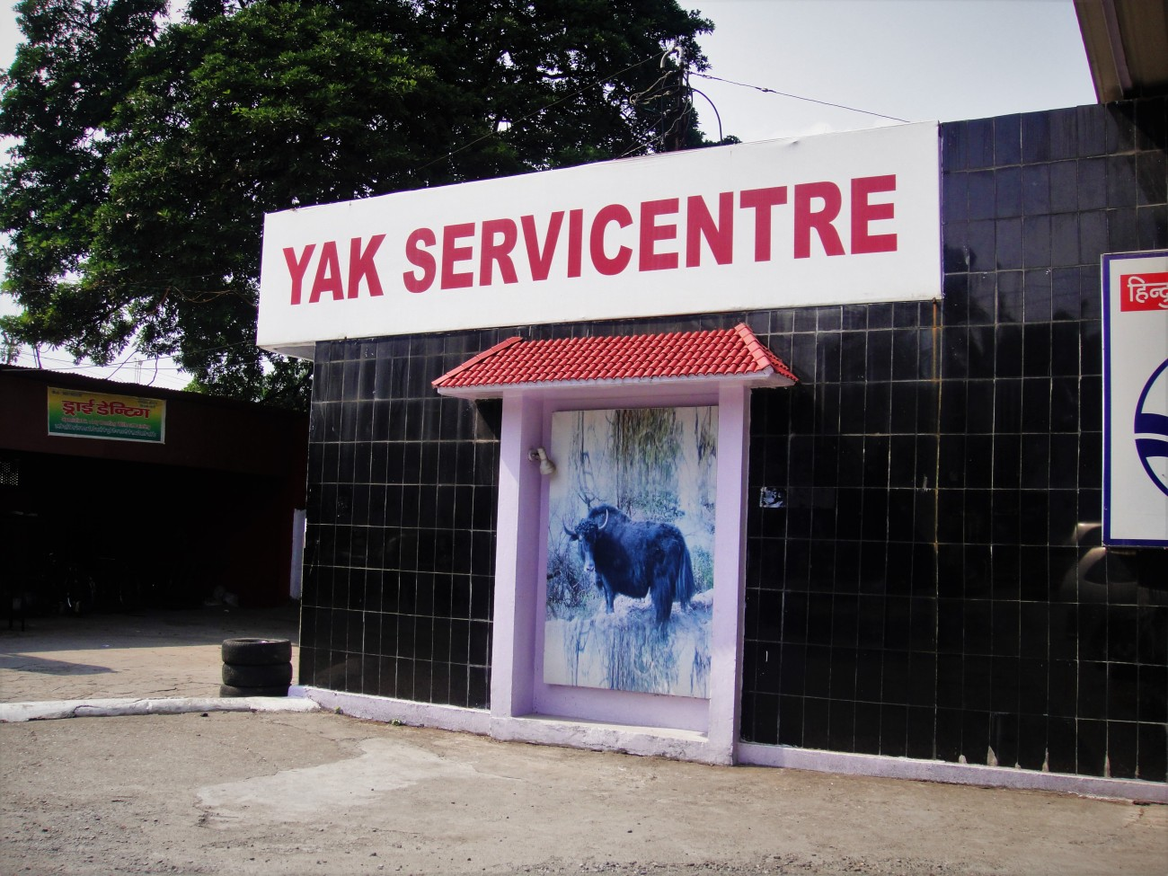 Get Yer Yaks Serviced
