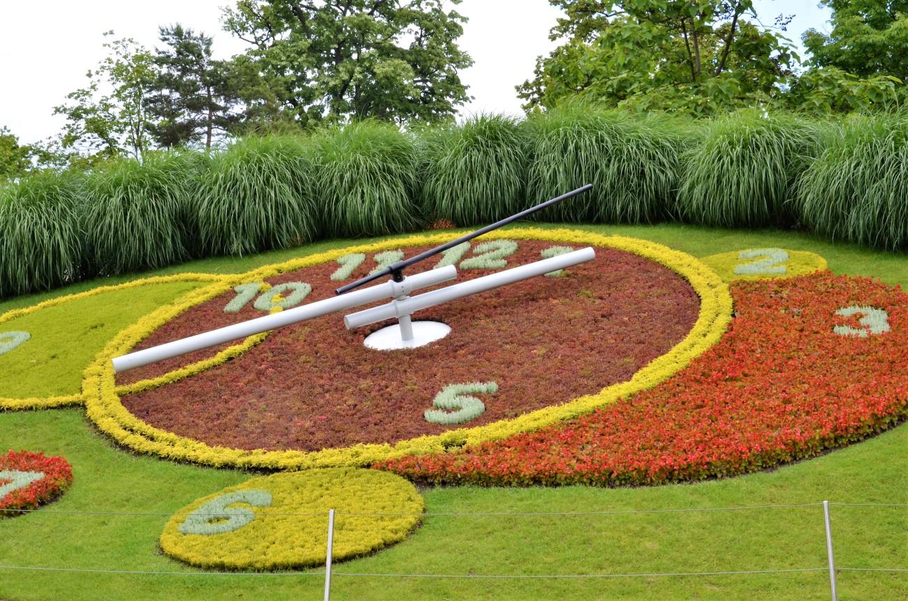 Flower Clock