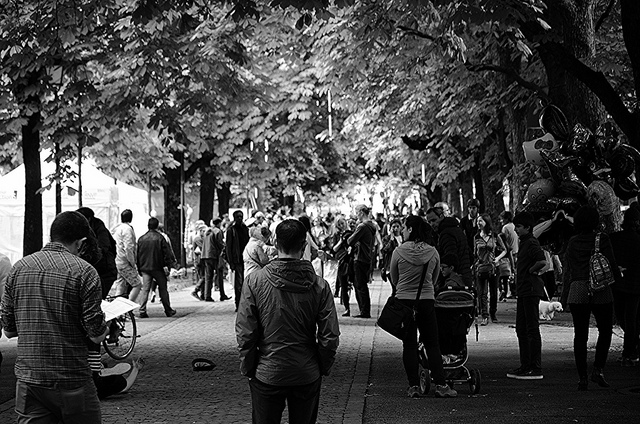 Park - Geneva - Cultural Activities