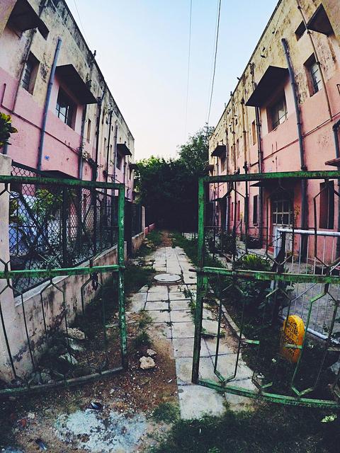 Back Lane - Lodi Art District