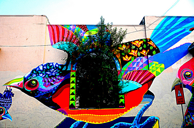 Bird - Lodi Art District