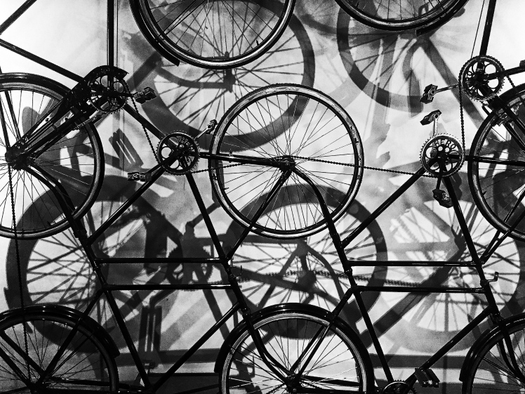 Art Installation - Cycles