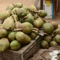 Coconuts – For coconut water