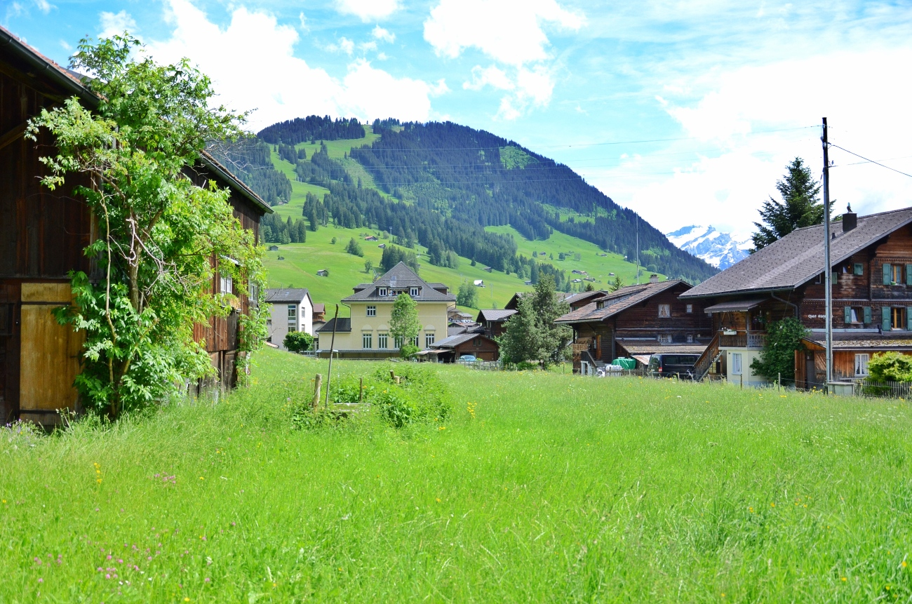 Green Gstaad