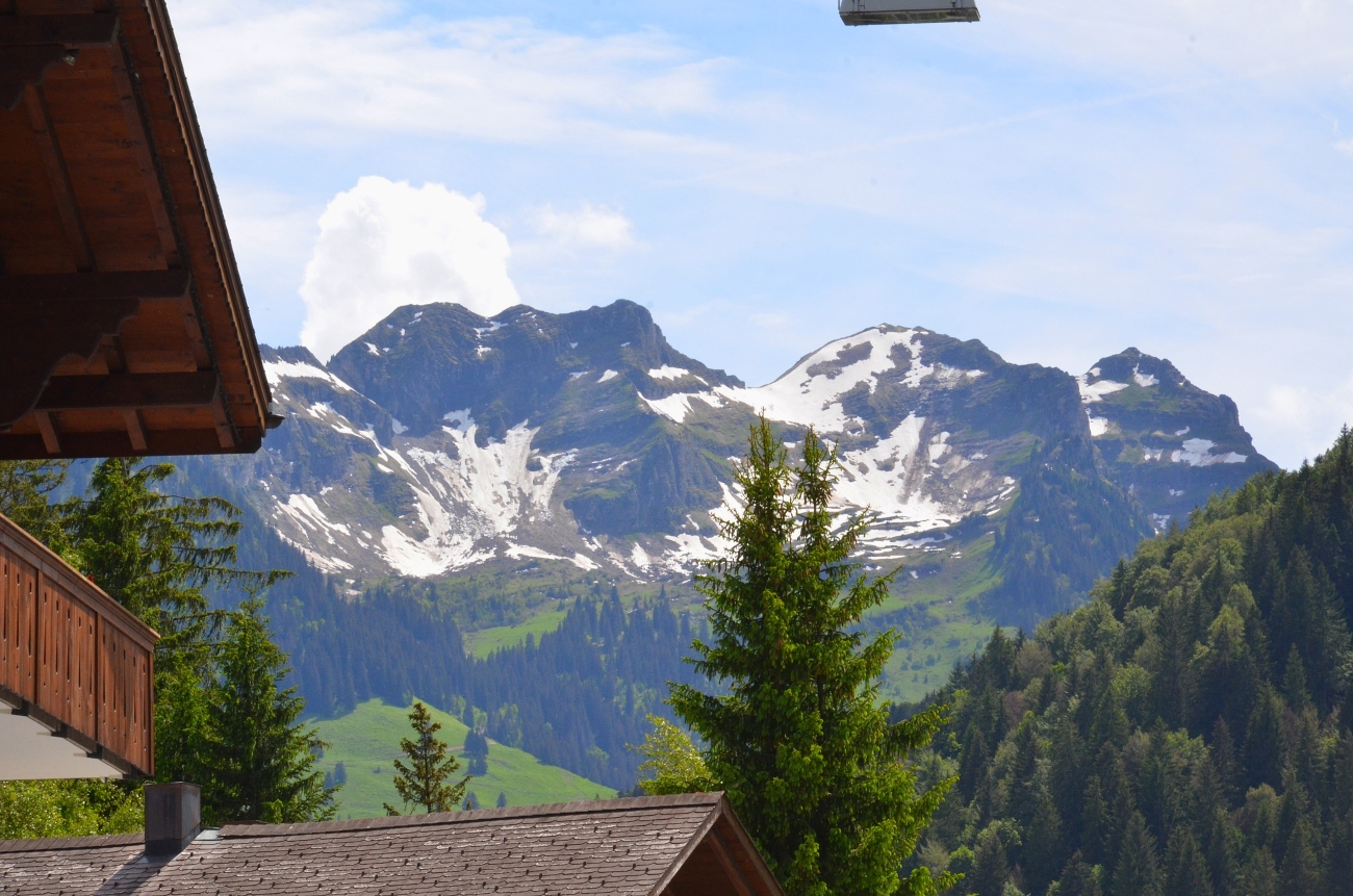Snow-capped Mountains - Gstaad