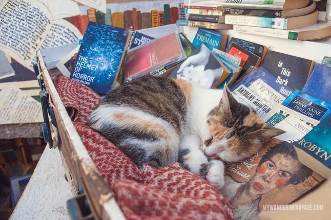 Altantis Books 2