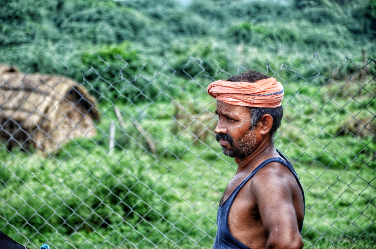 Man working in a farm