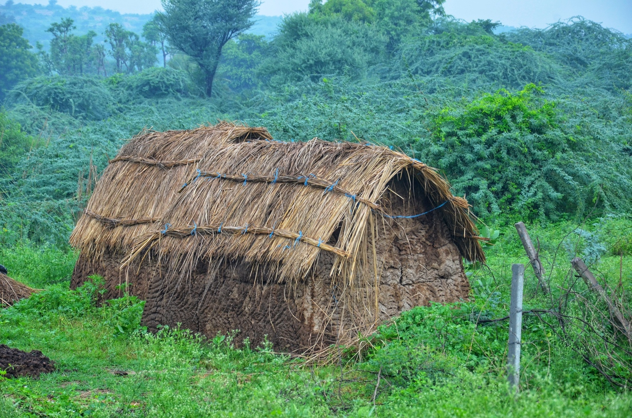 A hut in the jungle