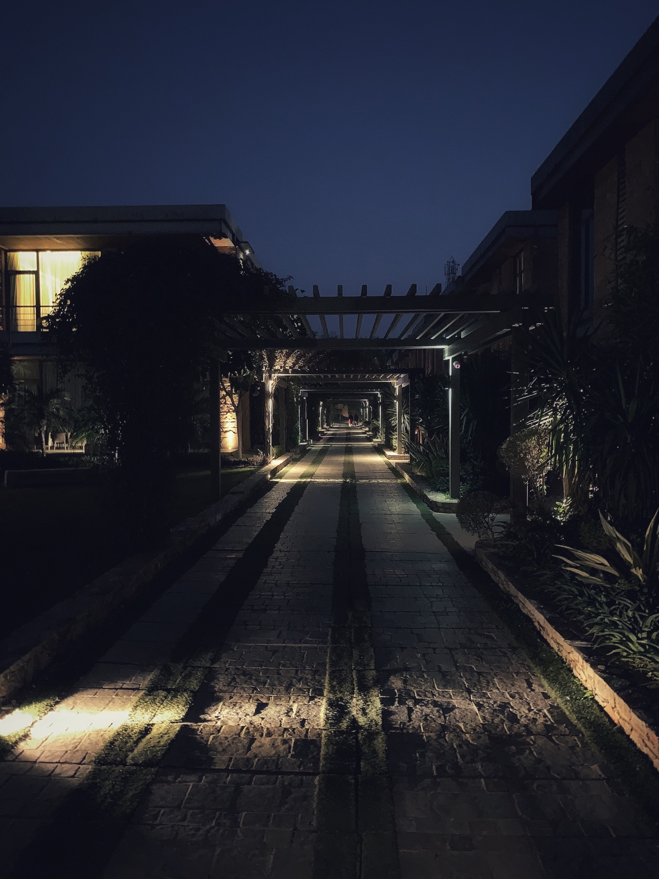 night path at Taj Damdama