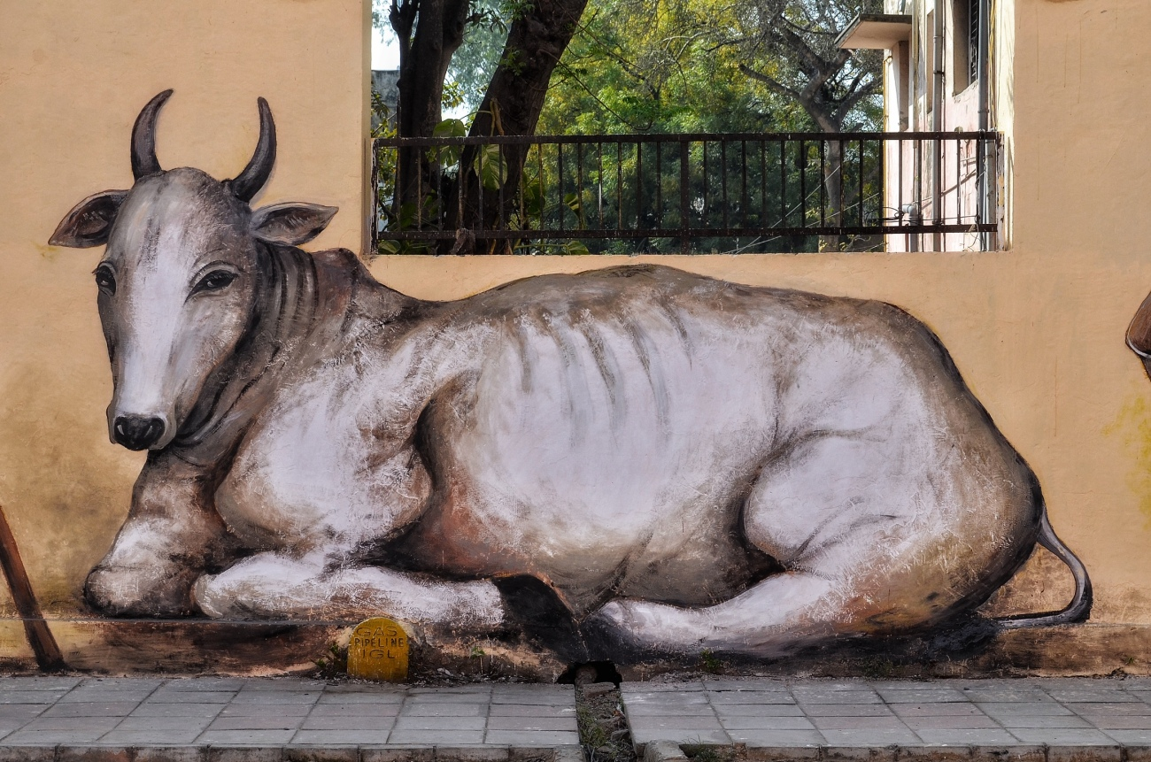 Holy Cow! - Art at the Most Instagramable Place in New Delhi.JPG