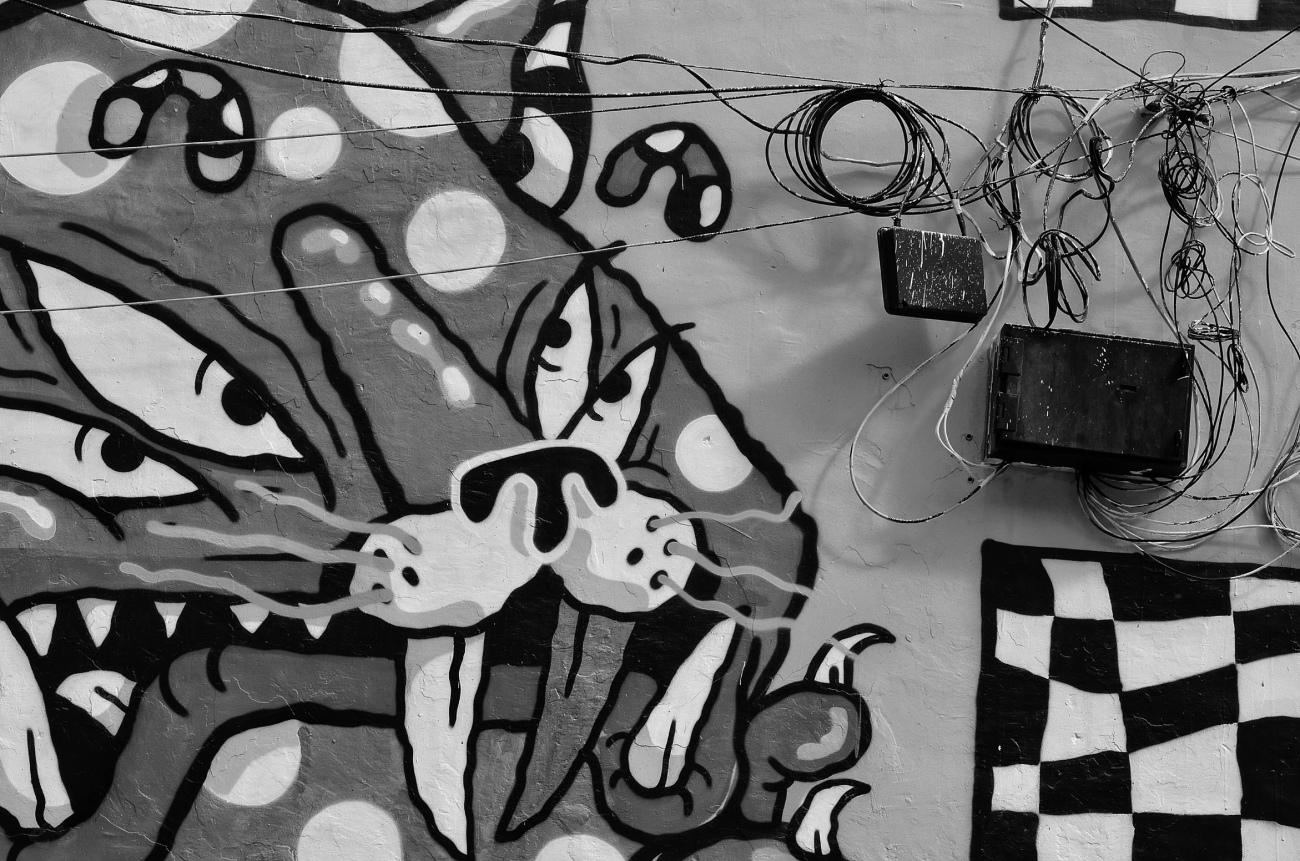 Meow! - Lodi Art District