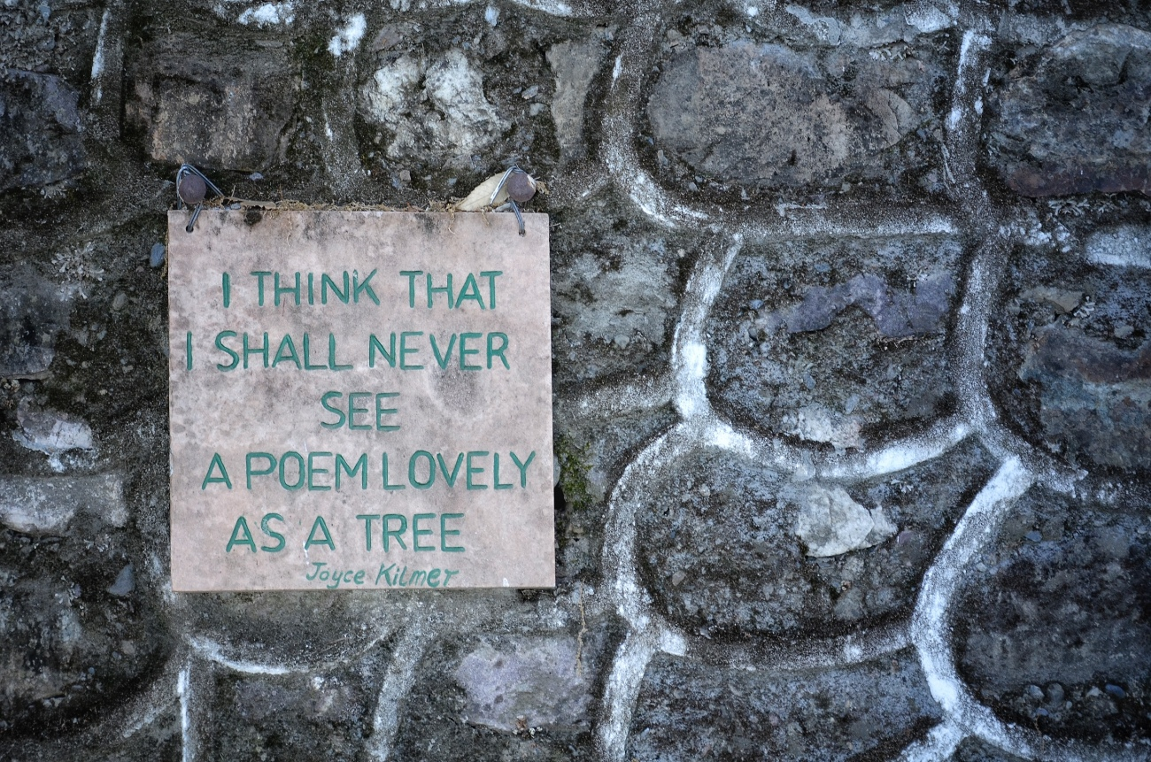 A note for the trees