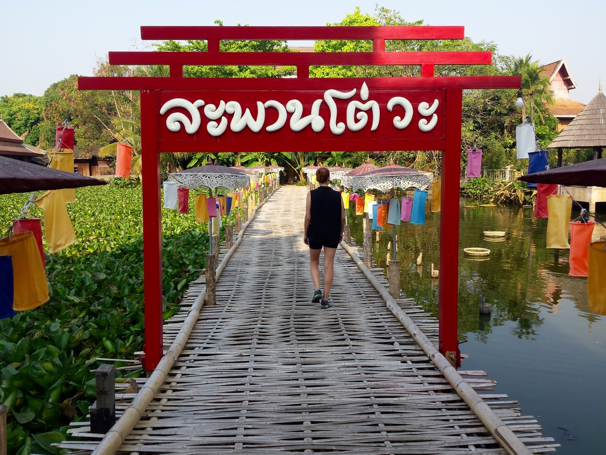 Exploring the pond by the Chiang Mai Gate Market