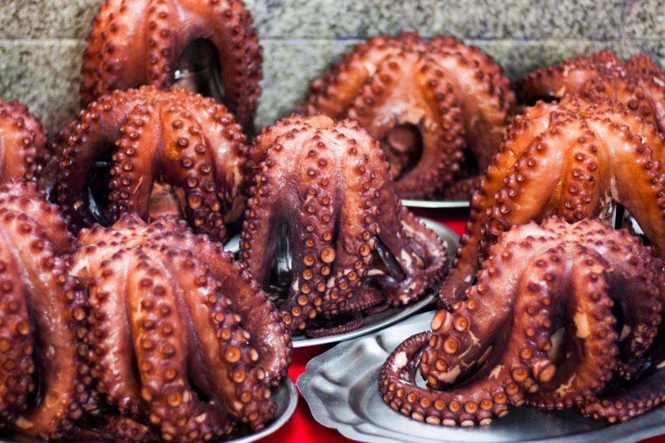 Octopus - Basque Cuisine