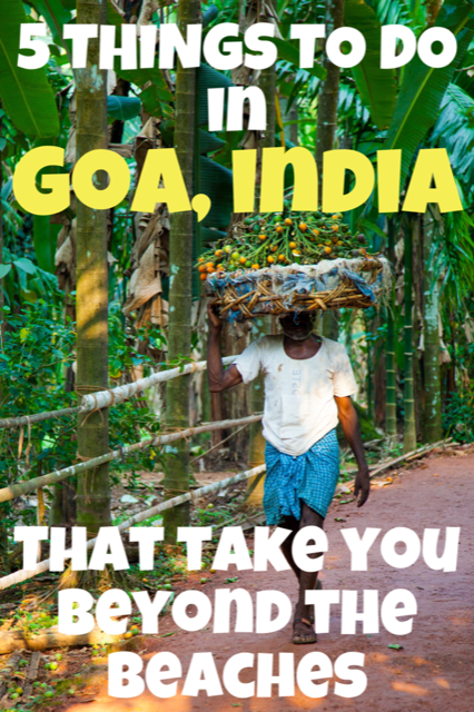 5 Things To Do in Goa Beyond the Beaches #India #Goa